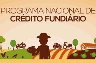 Programa Bolsa Verde: O que é e a quem se destina